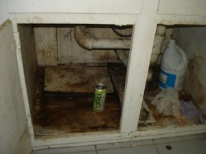 Kitchen sink mold